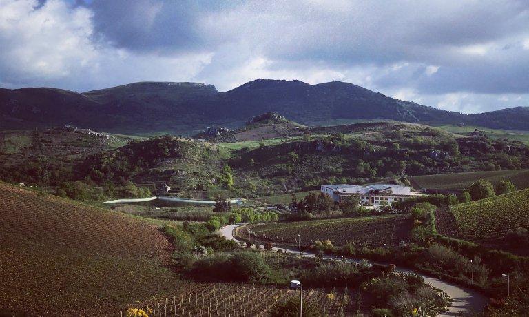 Feudo Disisa: Discovering Sicily