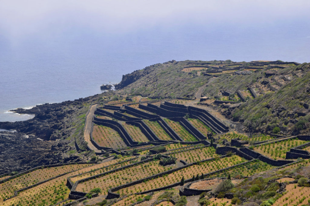 An Introduction To: Sicily