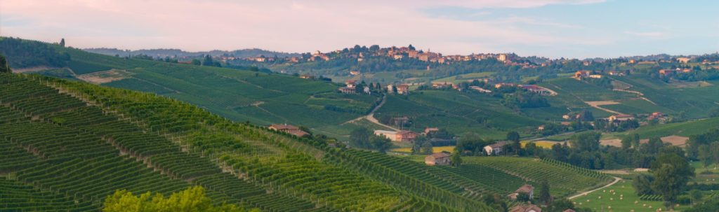 An Introduction To: Piedmont